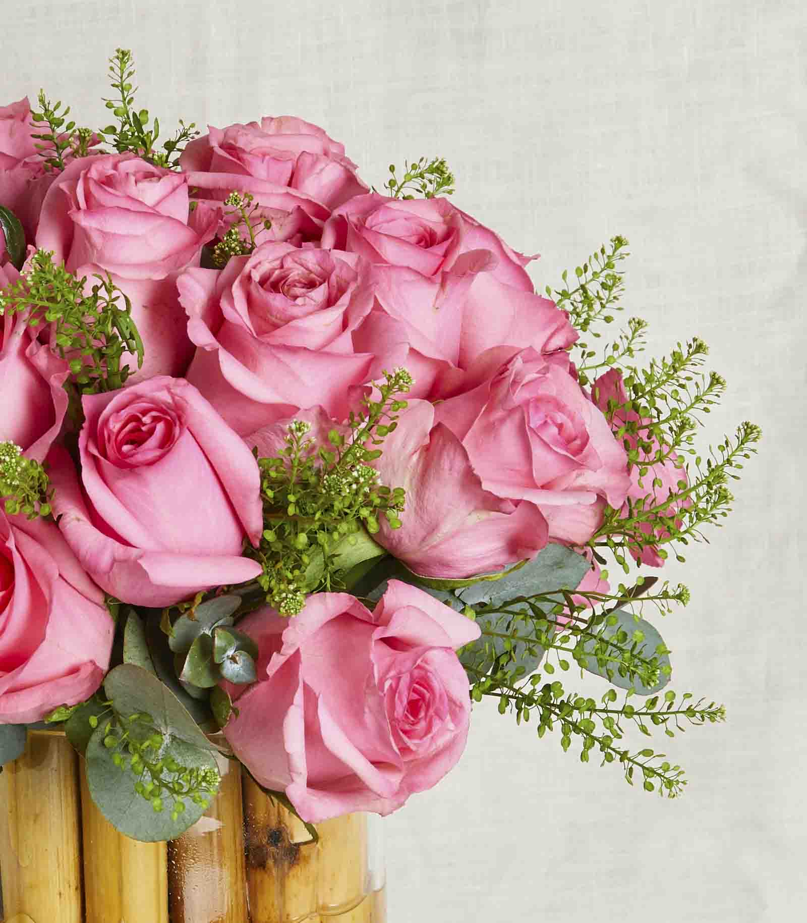 Bamboo Pink Roses
