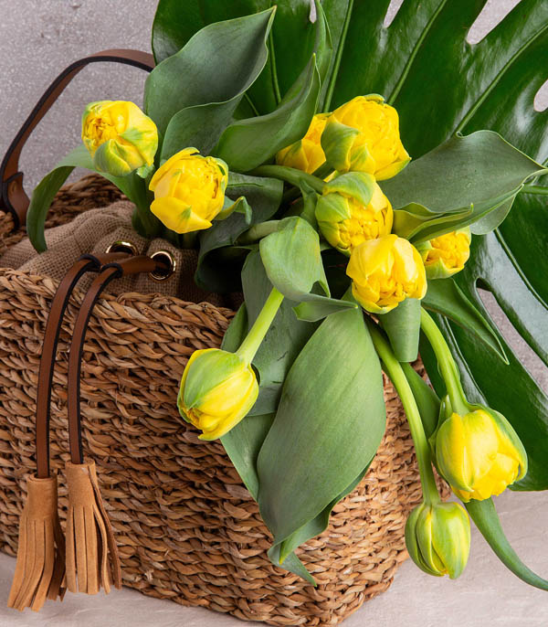 Yellow Tulips In Rattan Bag