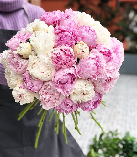 Grand Deluxe 30 White Pink Peonies Bouquet