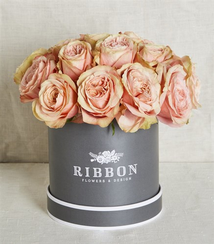Salmon Roses in Gray Box
