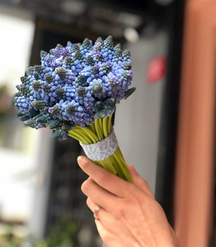 Blue Muscari Bouquet