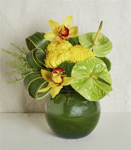 Yellow Orchid Arrangement