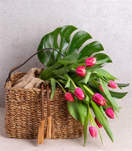 Pink Tulips In Rattan Bag