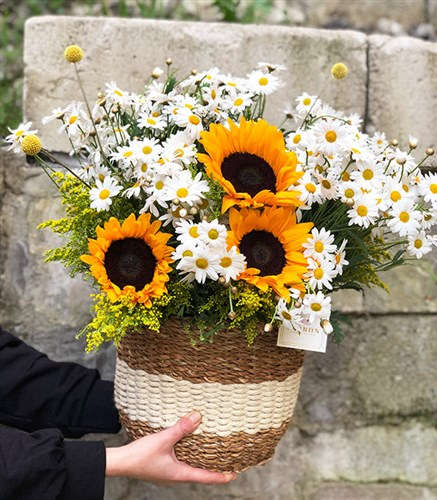 Daisies Sunflower Bouquet in Basket