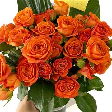 turuncu taze çiçekler